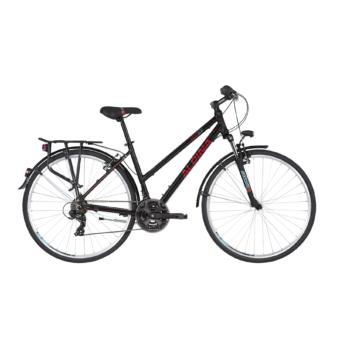 ALPINA ECO LT10 2020 Női Trekking Kerékpár - Több színben