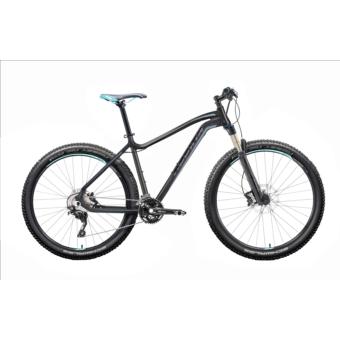 "Gepida ASGARD 29"" 2019 férfi kerékpár"