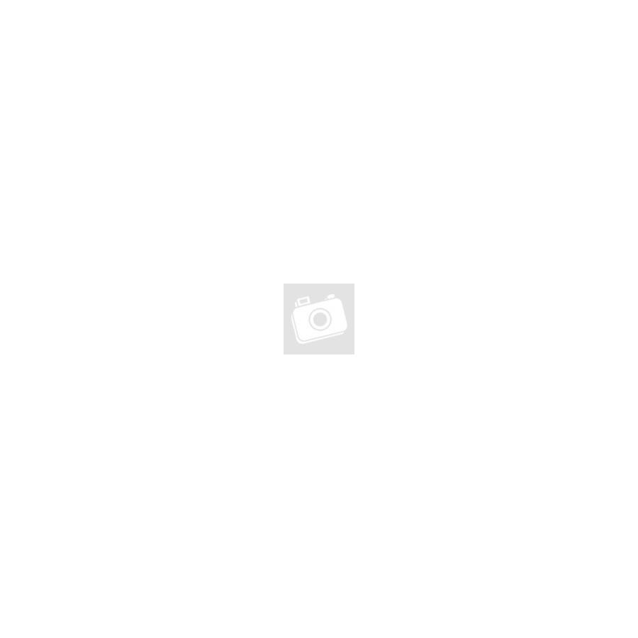 "Winora Sinus i9 Damen i500Wh 28"" 9-G Deore Női elektromos kerékpár - 2020"